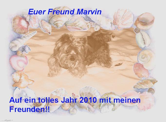 An den Beitrag angehängtes Bild: http://yorky-charly.beepworld.de/files/G.B.Bilder/frfreunde2010.jpg